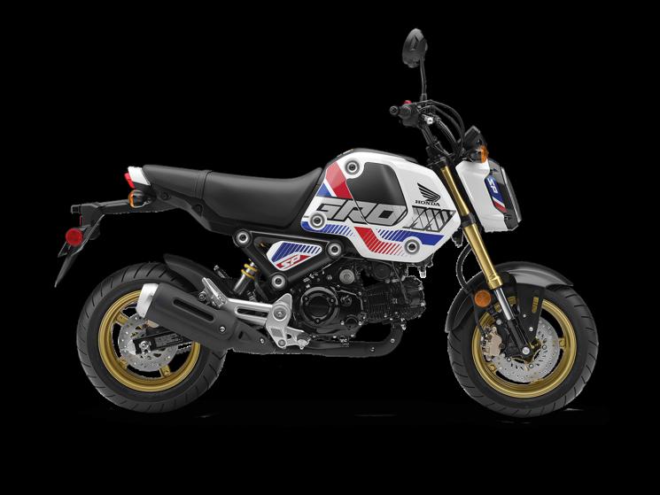 Honda GromTM 2022