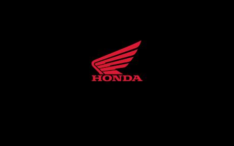 Honda Rubicon 520 DCT IRS EPS Camo 2 2022